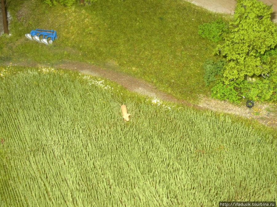 А один порось убежал в поле!