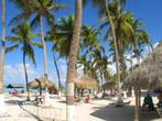 Нас привезли на райский пляж Палм Бич. 9.00 утра. Тишина просто оглушала. Первый раз такую тишину я услышал, выйдя утром к бассейну на вилле в Вильфранше. Уникальный пляж, где вместо зонтиков — пальмы