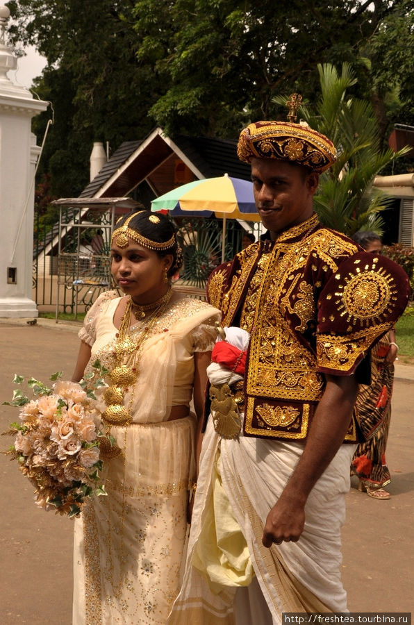 Сари невесты, конечно, нарядное, но все взоры притягивает к себе жених в блестящей на солнце шитой курточке и шапочке, повторяющей фасон парадного костюма кандийских королей, принцев и их подданых.