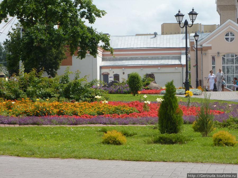 Количество цветов на улицах восхищает!
