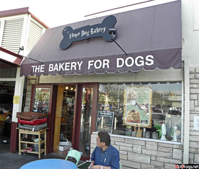 Пекарня для собак