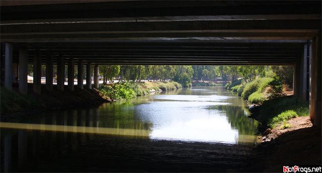 Выглядываем из-под моста