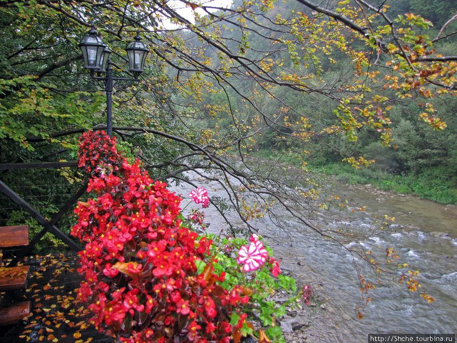 река Латорица