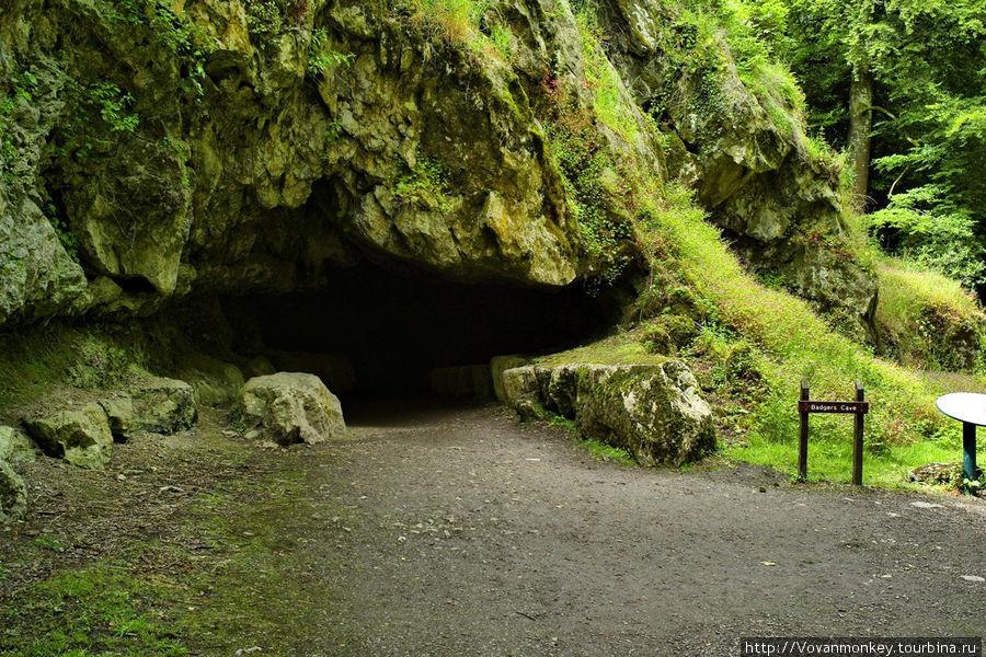 Барсучьи пещеры.