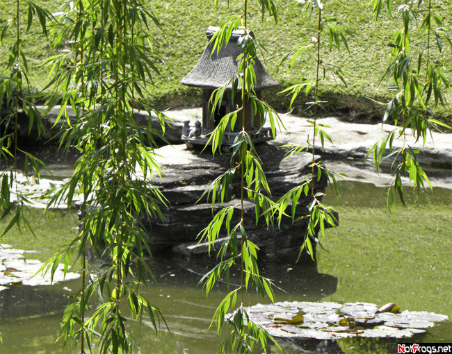 В японских садах