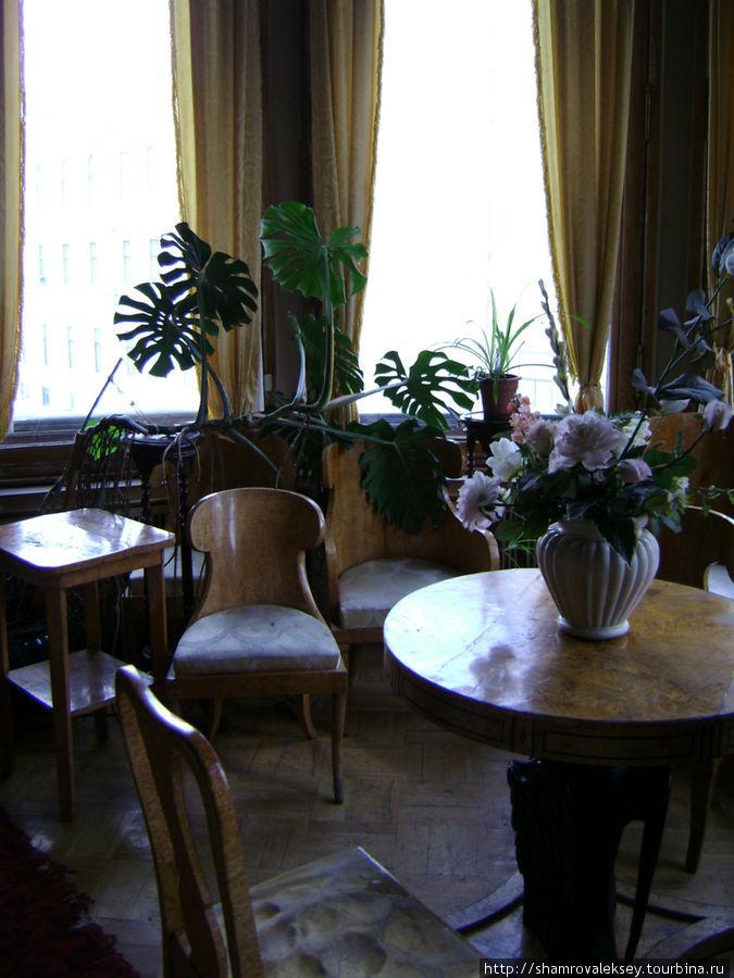 Коллекция мебели из карельской березы
