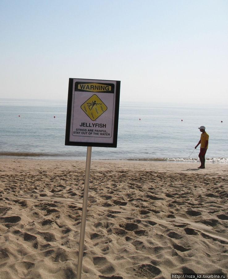 предупреждение о медузах и спасатель начеку