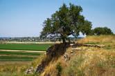 Часть траншеи, которой Шлиман во время раскопок разделил холм.