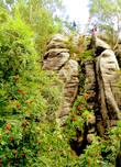 С давних времен (с 17 века) Праховские скалы  были собственностью аристократического рода Шликов вплоть до 1948 года, когда природное «имущество» было конфисковано новой «народной» властью