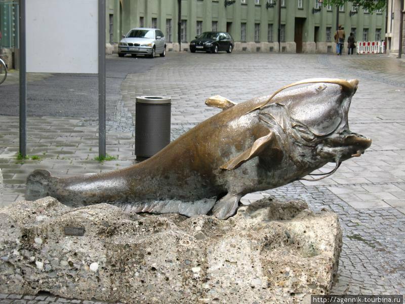 Сом возле музея Охоты и Рыбалки