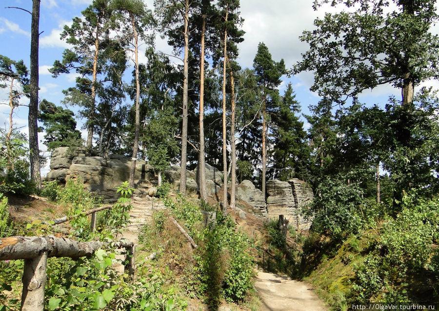 На Праховских скалах несколько маршрутов