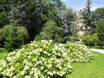 В городе много  садов и парков — Йирасковы сады