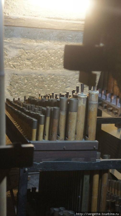 Трубы бамбукового органа с задней стороны