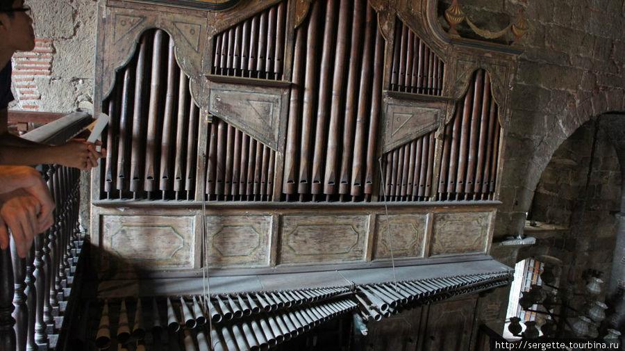 Трубы бамбукового органа