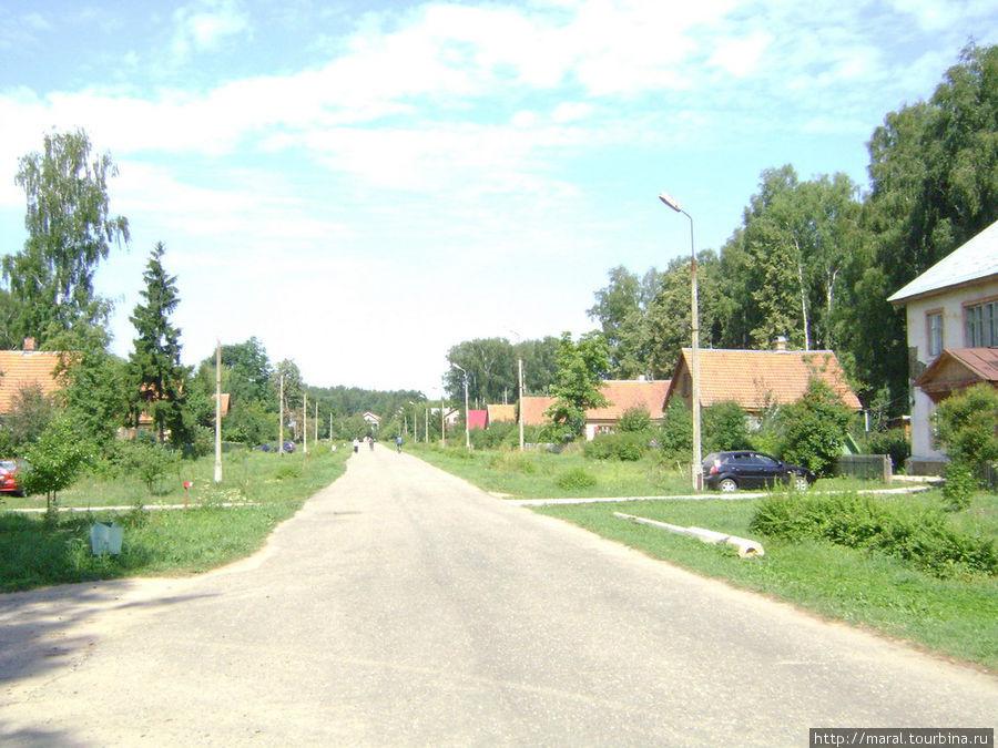 Центральная улица Борка