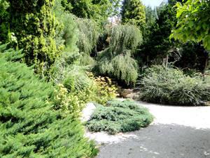 В Йирасковом саду