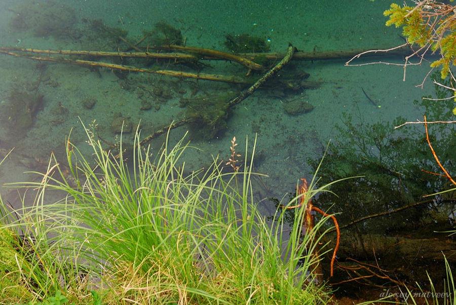 Голубая вода Сейдозера