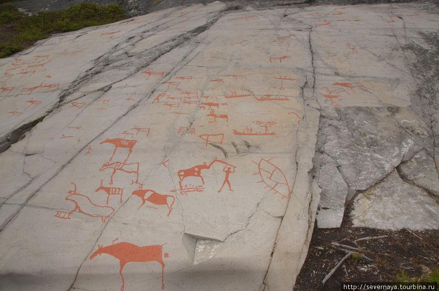 Музей наскальных рисунков в Альте
