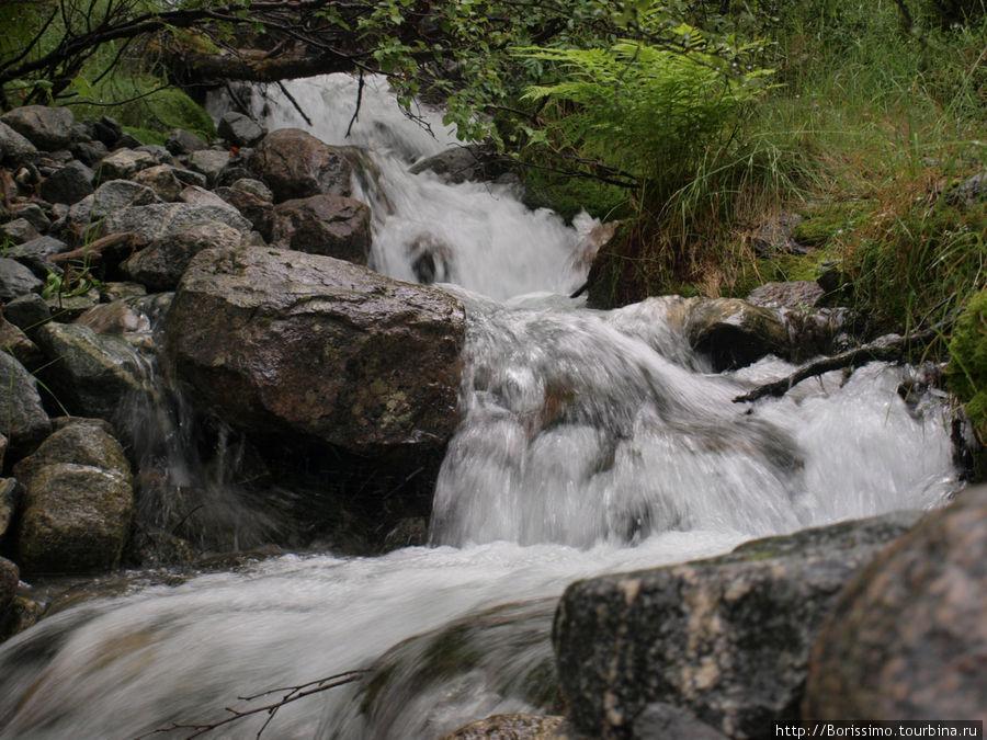 Ледник даёт начало бесчисленным ручейкам и речкам.