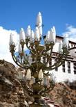 Тибетский фонарик