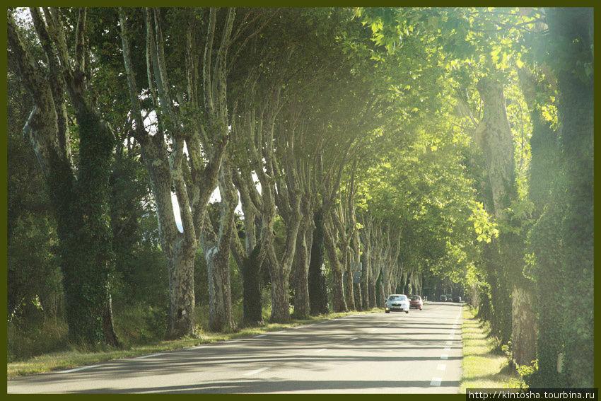 l'autoroute D99 — между Сан-Реми и Майан Прованс-Альпы-Лазурный берег, Франция