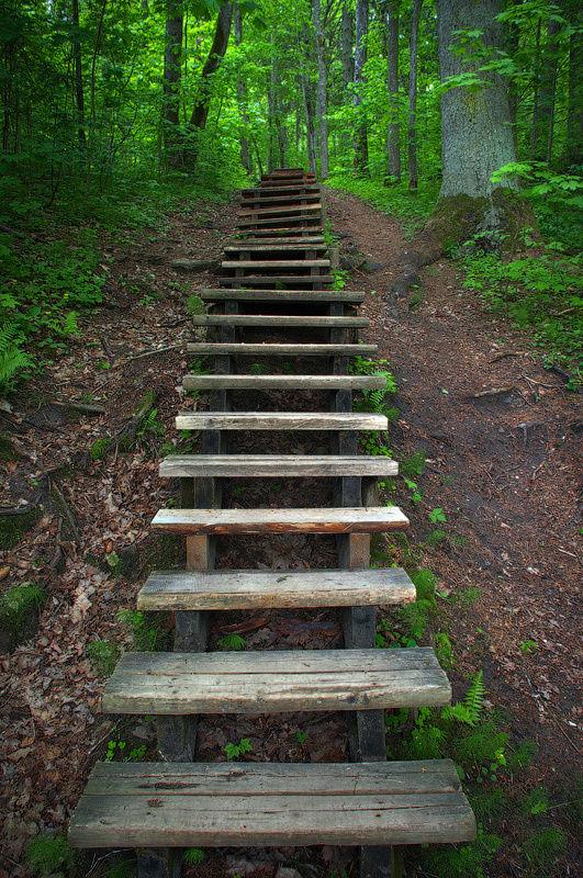Лестница на берегу