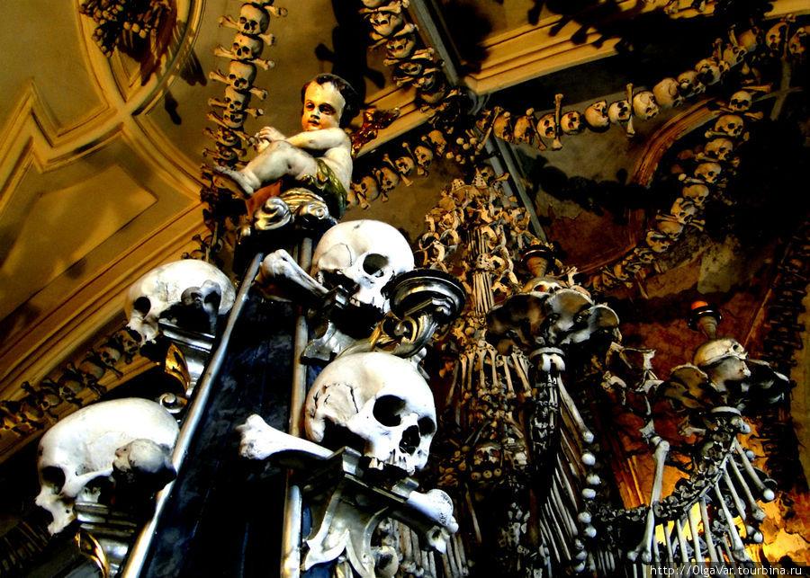 По подсчетам в убранстве седлецкого костехранилища собраны останки около 40 тысяч человек