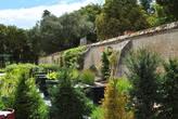 В огороде Шеверни есть даже водные цветы — лилии, кувшинки и т.д. Они стоят в больших кадках.