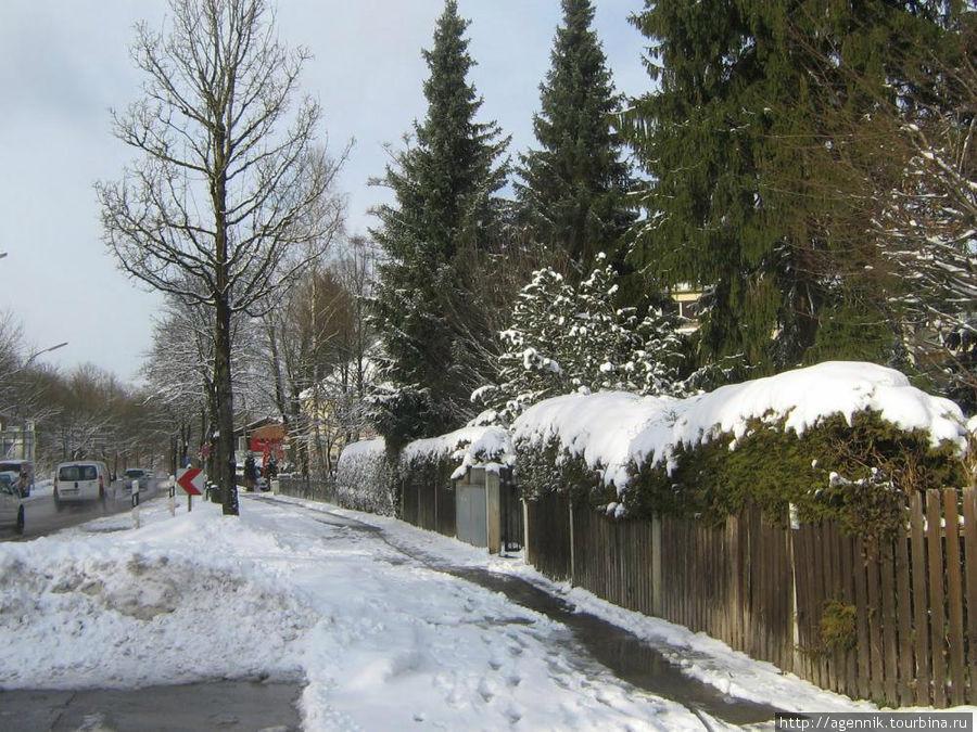 Зима 2010 года была довольно суровой