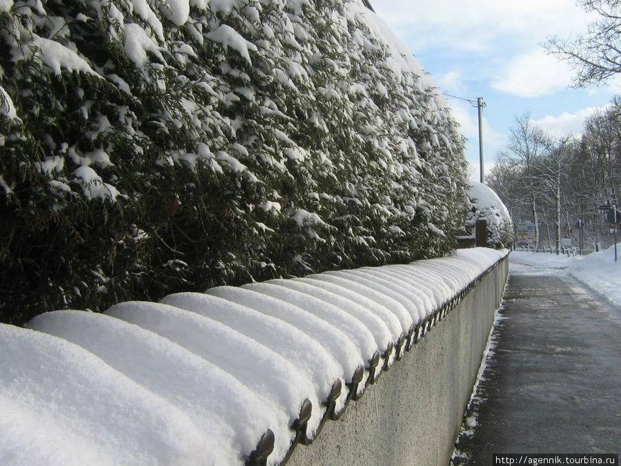 Ограда у церкви зимой