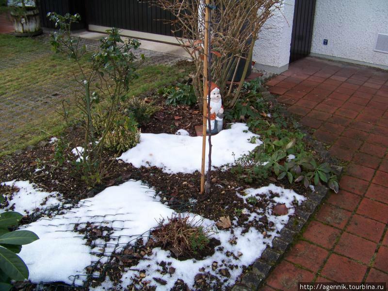 Гном — любимое садовое украшение