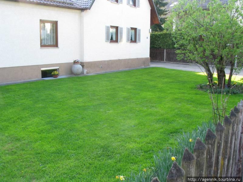 Типичный газон