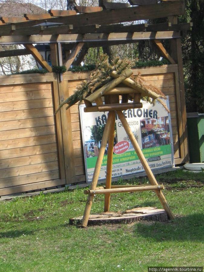 Возле биргардена — тоже дом для птиц