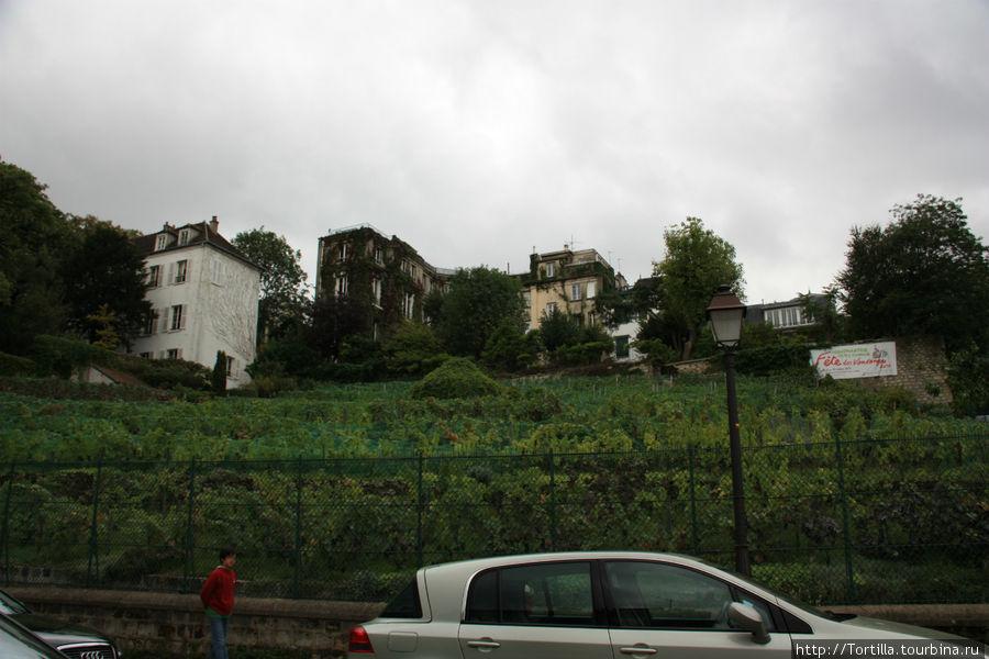 Париж. Виноградник Монмартра