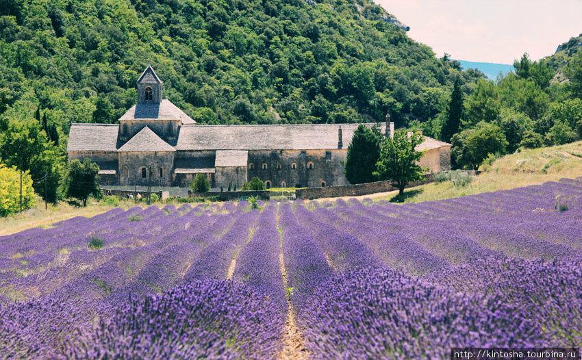 Прованс. Таинственное аббатство и городок на скале Горд, Франция