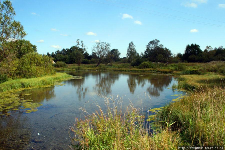 Парк с системой протоков и прудов.