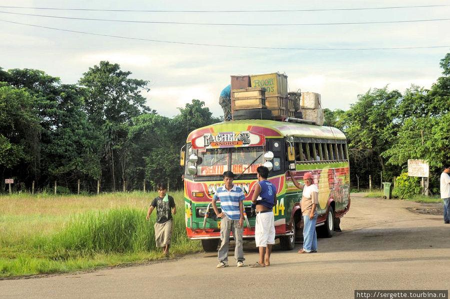 Такие пабликбасы колесят по дорогам Филиппин