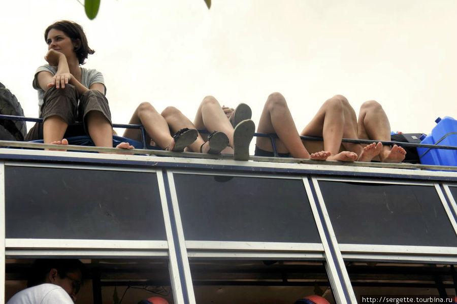 Девченкам жарко было, полезли на крышу