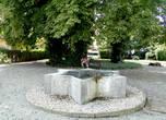 В сквере рядом с памятником жертвам холокоста