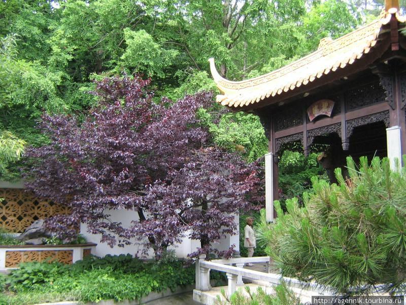 Японский сад