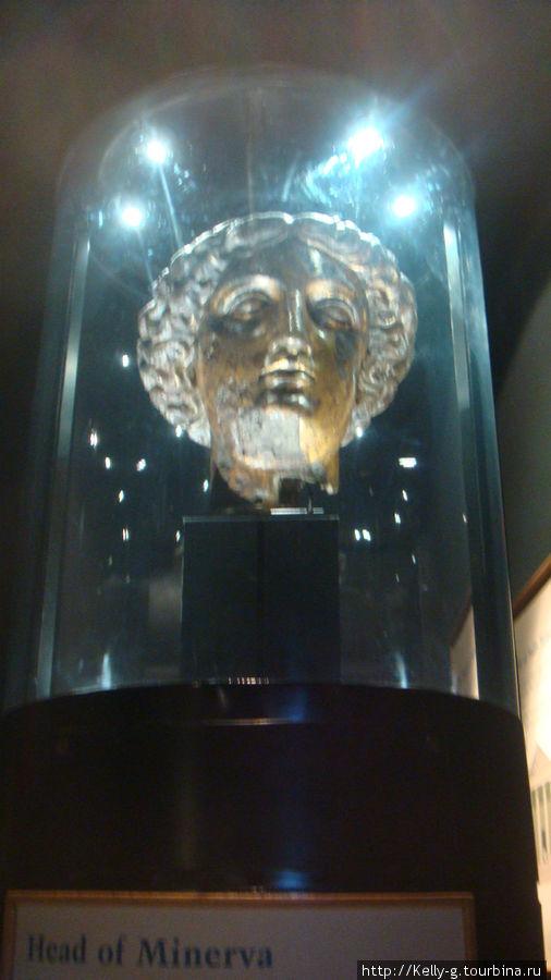 Голова Минервы