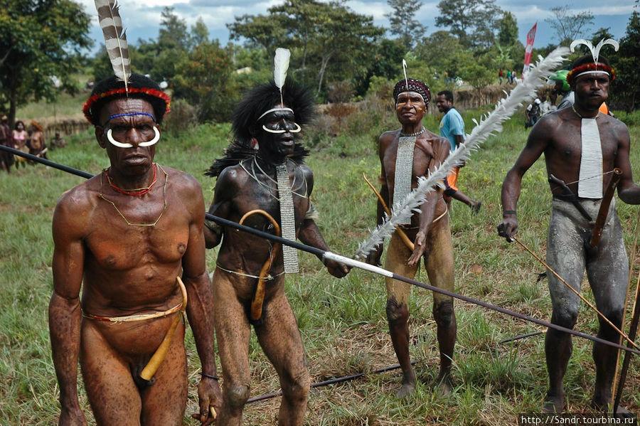 Папуасы надевают на член