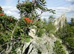 Хребет расположен среди невысоких гор, поросших лесом, потому он сильно выделяется над окружающим его пространством
