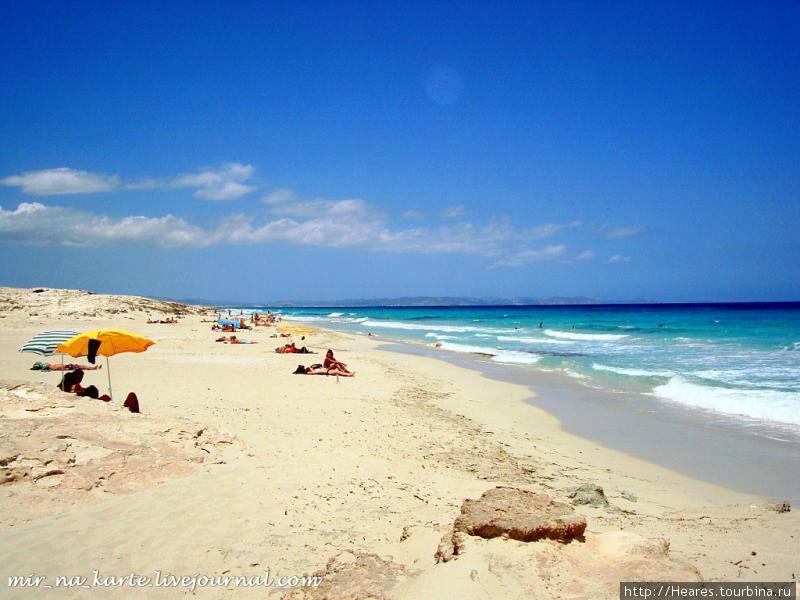 Из зимы в лето Канделария, остров Тенерифе, Испания.