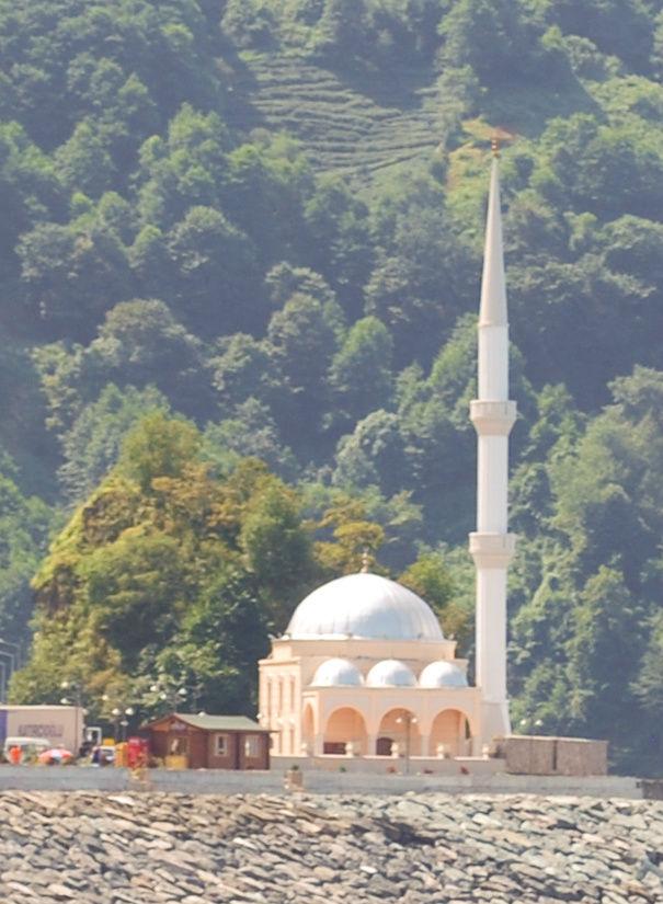 Последняя турецкая мечеть. Запечатлена с грузинской стороны.