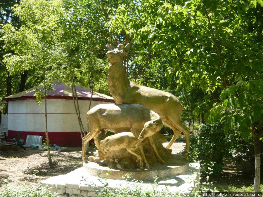 Олени в центральном парке