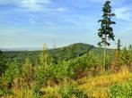 Гора Волчиха, возвышающаяся над лесами, самая высокая гора в ближних окрестностях Ревды (526 м), относится к Ревдинскому хребту