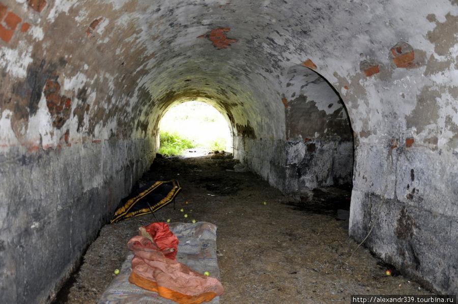 В подземелье крепости жив