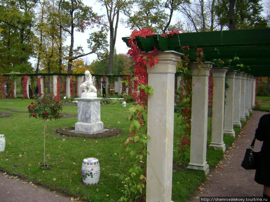 Собственный садик окружённый красивыми перголами