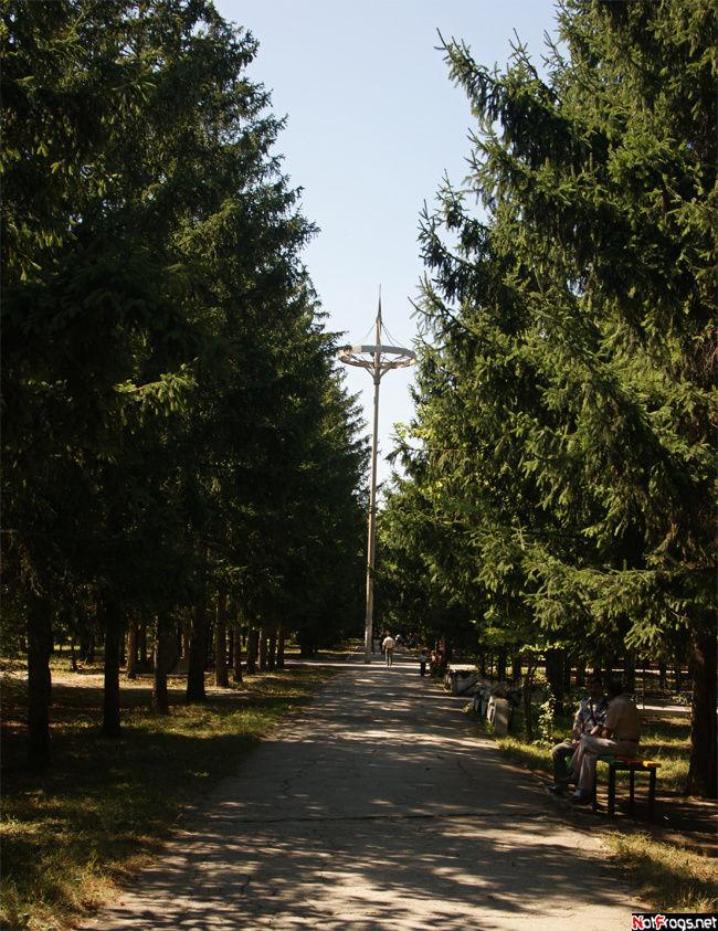 В центральном городском парке
